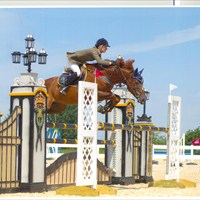 Foxhunter 2nd round0001